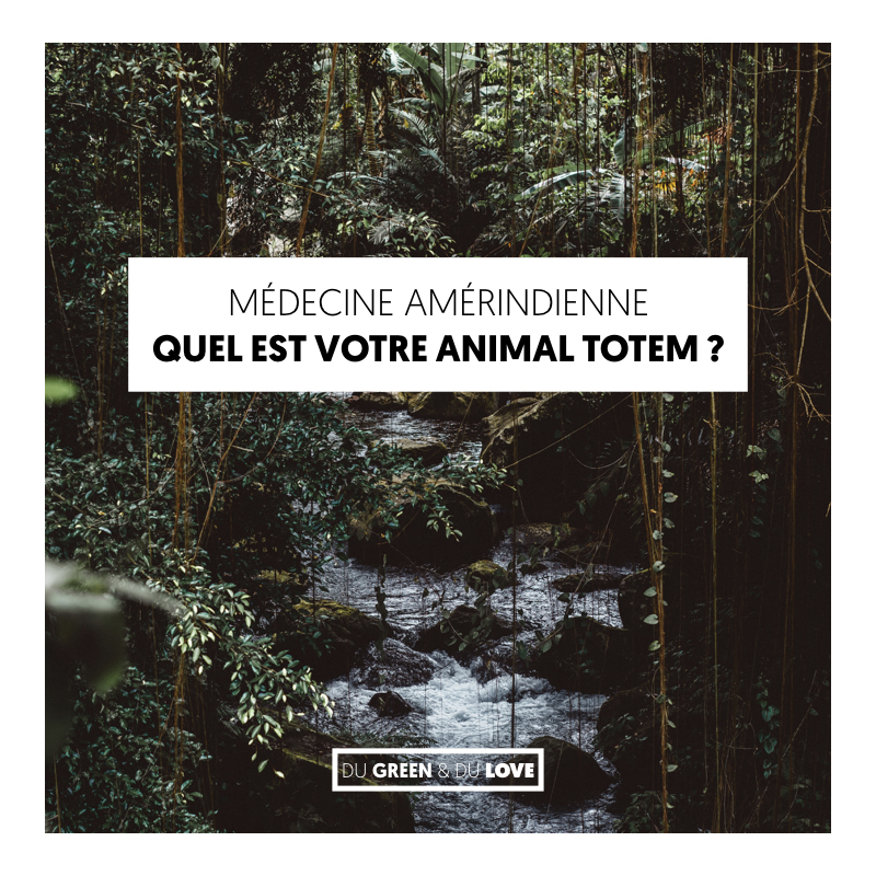 du-green-et-du-love-article-medecine-amerindienne-animal-totem.001