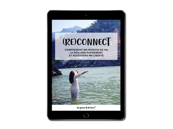 dugreenetdulove-reconnect-ebook-ipad-yoga-alimentation-vivante-saine-jus